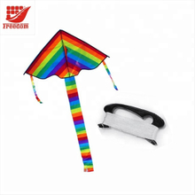 Promotional OEM Large Kites for Sale